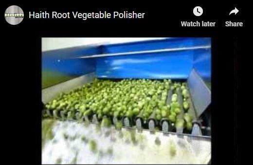 Haith Video - Vegetable Polisher