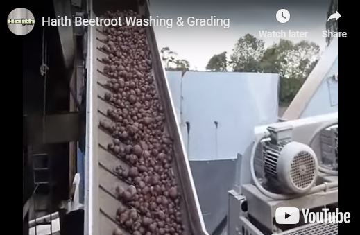 Haith Video - Washing and Grading