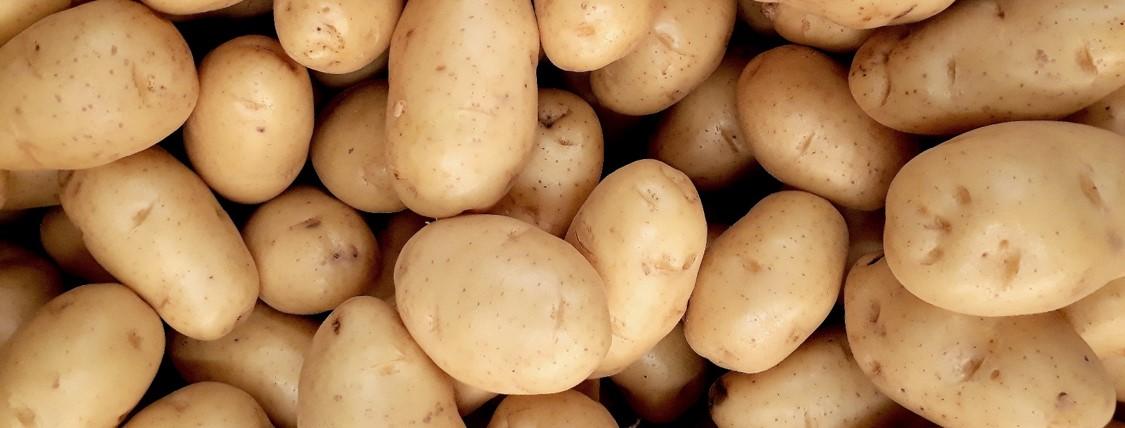 Pile of Potatoes Header