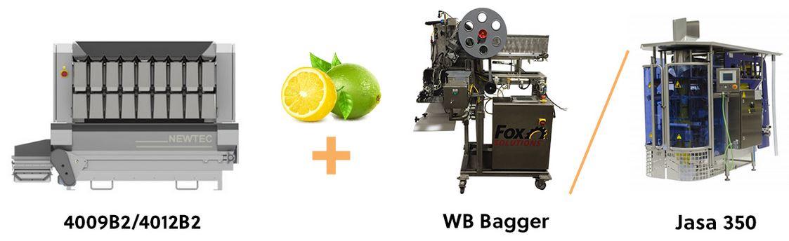 Small Citrus Pairing